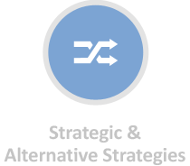 Strategic & Alternative Strategies
